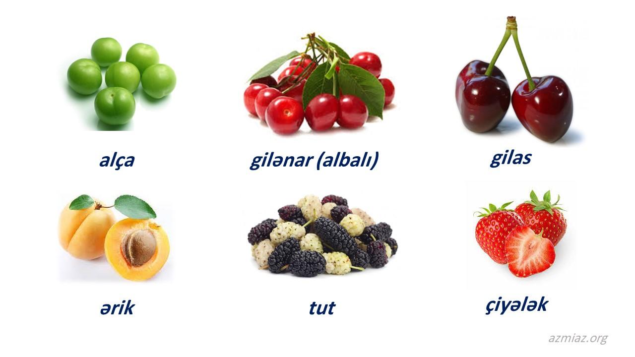 میوه های بهاری، آلوچه، گیلاس، آلبالو، توت، توت فرنگی، زردآلو